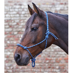 Knoophalster donker blauw / taupe