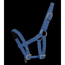 Halster Mini-Shetty Azuur Blauw