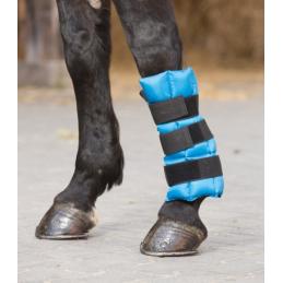 Beenkoeler voor het paardenbeen