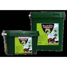 Vitamine E Plus voor paarden 2.5kg