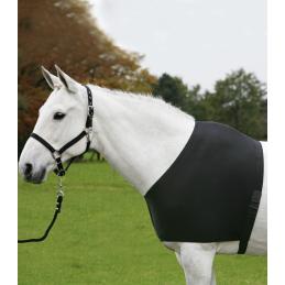 Borstbeschermer en Schoftbeschermer Paard of Pony